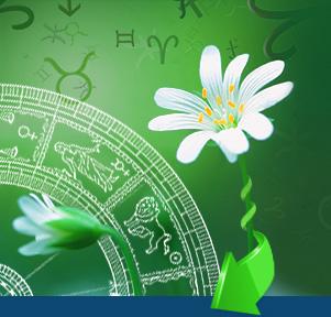 Индивидуальный гороскоп составить на 2016 год